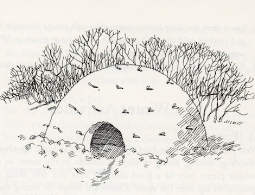 Make a Snow Dome While Enjoying the Adventure